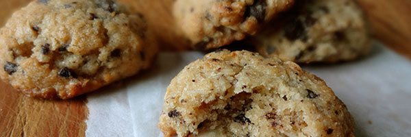 sugar-free coconut cacao cookies