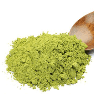 Scoop of pea protein powder