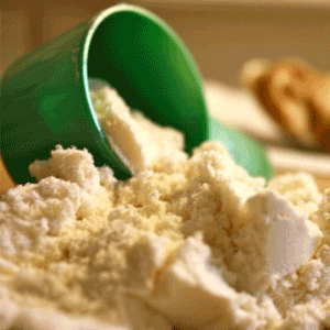 Whey concentrate protein powder scoop