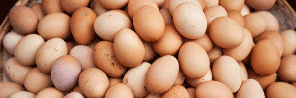 Pile of brown chicken eggs in basket