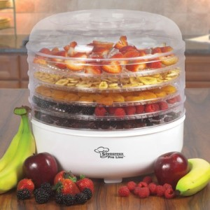 Food dehydrator with fruit in trays