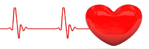 A heart with cardiac rythem
