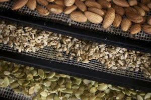 Nuts on racks in food dehydrator