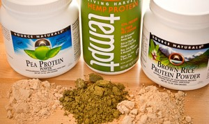 vegetable protein powders