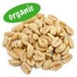 Certified organic dry roasted peanuts.  Peanuts are high in protein and have a very strong yet delicious flavour.